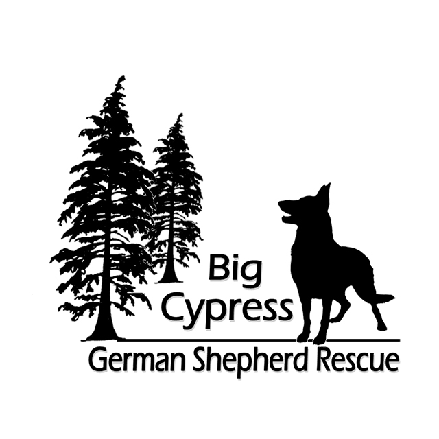 Big Cypress German Shepard Rescue, Local Rescue in Collier County, FL | Saving Grace Pet Food Bank, Inc.