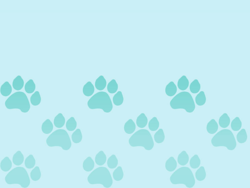 Light Blue Gradient Paw Prints | Saving Grace Pet Food Bank, Inc.